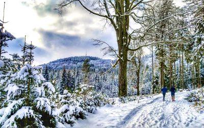 Specifika běžeckého tréninku v zimě