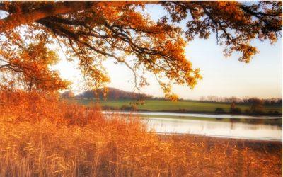 Podzimní běžecké vrnění si
